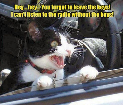 you forgot to leave the keys!