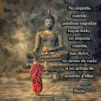 Buda Frase