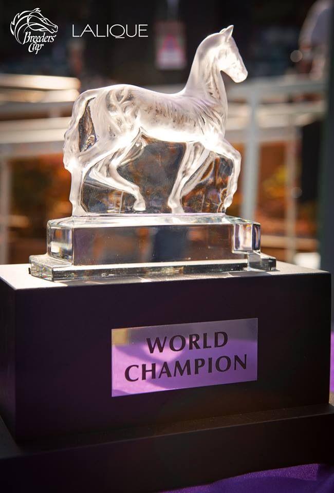 Breeder's Cup Trophy -2013