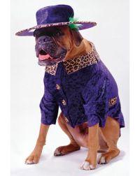 Big Daddy Boxer Pimp Dog Costume | Funny Dog Costumes ...