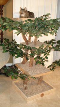 cute diy cat tree kit | Crafts | Pinterest