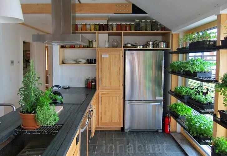 Kitchen Greenhouse Window  Home  Pinterest