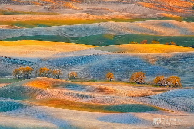 Spring Snow, Palouse | Flickr - Photo Sharing!
