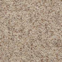 Pin by Georgia Carpet Industries on Shaw Anso Nylon Carpet ...