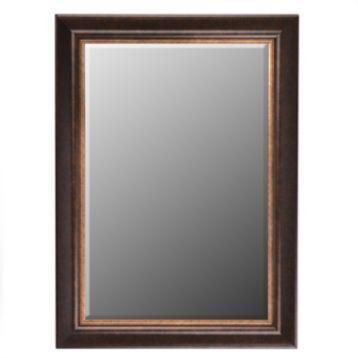 Bronze  Gold Mirror 32x44  Kirklands  For the Home