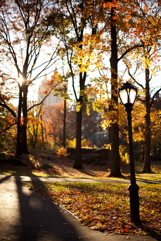 Fall, Central Park West....amazing