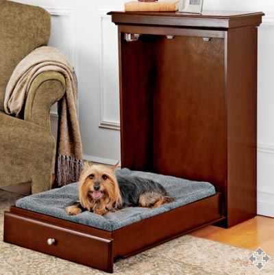awwww! a cute little doggy murphy bed