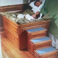 dog bed 0 so cute | Cute ideas! | Pinterest