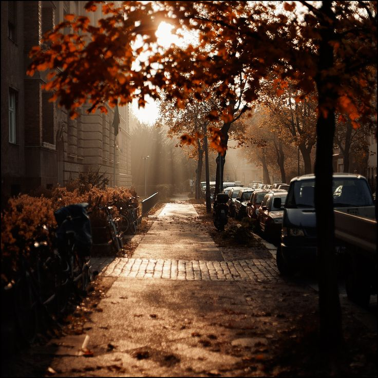 Autumn morning in Berlin (by Alexander Rentsch)