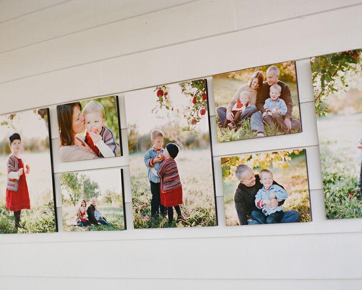 fall family portraits on