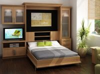 Murphy Bed wall unit | For the Home | Pinterest