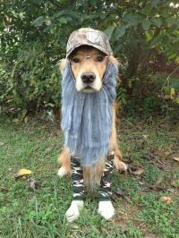 Duck Dynasty dog costume