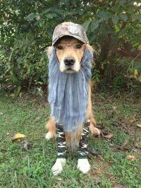 Duck Dynasty dog costume | Dog stuff | Pinterest