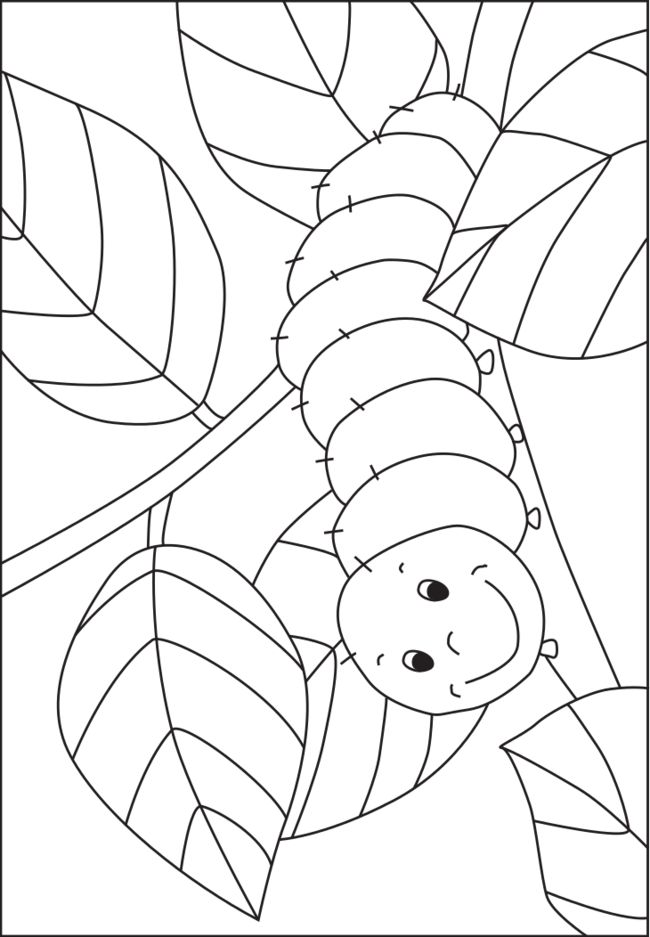 Free coloring pages of minibeasts