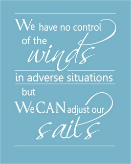We have no control of the winds in adverse situations,   but we can adjust our sails. -- Bertha Calloway, also attributed to Dolly Parton