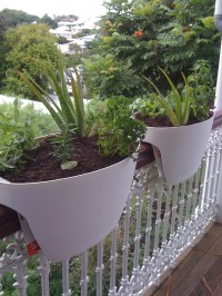 Our balcony herb garden. | Dining / Lounge / Balcony ...
