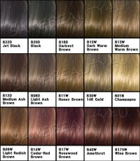 Clairol Hair Color | apexwallpapers.com