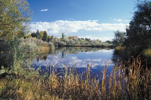 Majestic View Nature Center by #cityofarvada, via Flickr