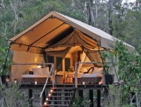 Elevated tent | Camp Out | Pinterest