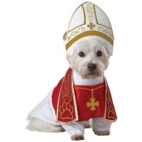 Holy Hound Pet Costume Pet Pope Dog Priest Halloween Fancy ...