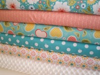 Riley Blake and Minky Fabric Bundle in Apple of My Eye