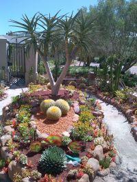 succulent garden | Desert landscaping ideas | Pinterest