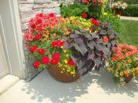 Outdoor flower pots | flower pot arrangements | Pinterest