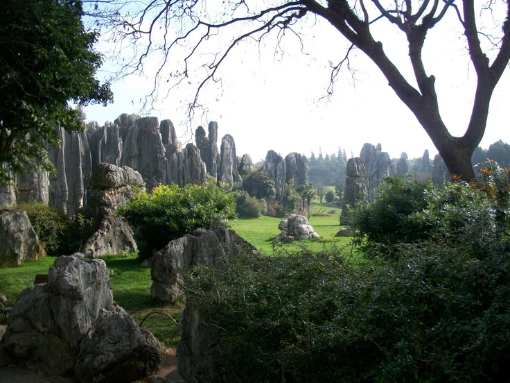 Stone Forest Yunnan Province China