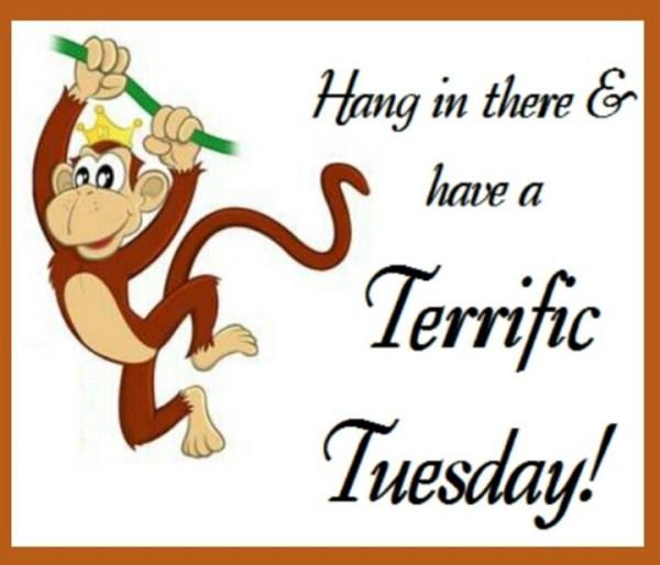 Terrific Tuesday Quotes QuotesGram