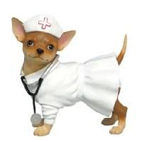 Dog nurse costume - Lookup BeforeBuying