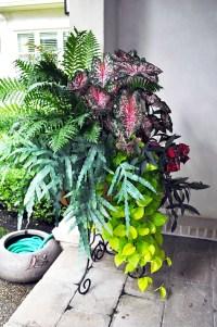 Pot flower arrangement | Outdoor/Garden Ideas | Pinterest
