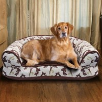 Dog Beds costco | PitBulls