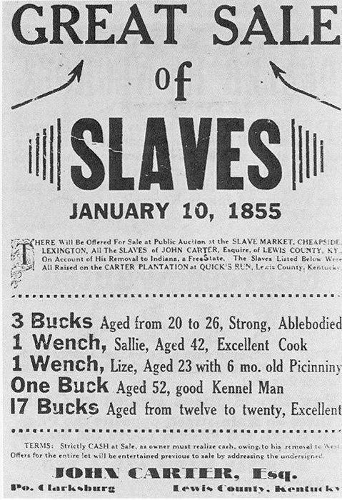 Slave Auction - what Democrats supported