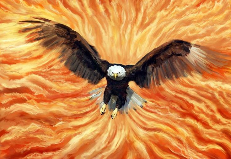 "The Seer Eagles go ahead of the army. When they flap their wings, the Fiery Presence of God billows and moves and clears the atmosphere so the army can move forward and take ground for the Kingdom of God! HalleluYah! (Inspiration from Rick Joyner's book ""The Torch and The Sword"")""Rise of the Seers"" picture by Chaya Anderson"