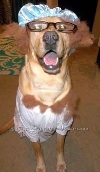 Little Red Riding Hood Pet Dog Costume