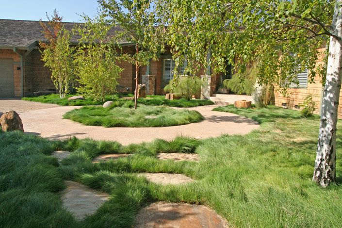 Building Ideas Backyard Landscaping Ideas No Grass
