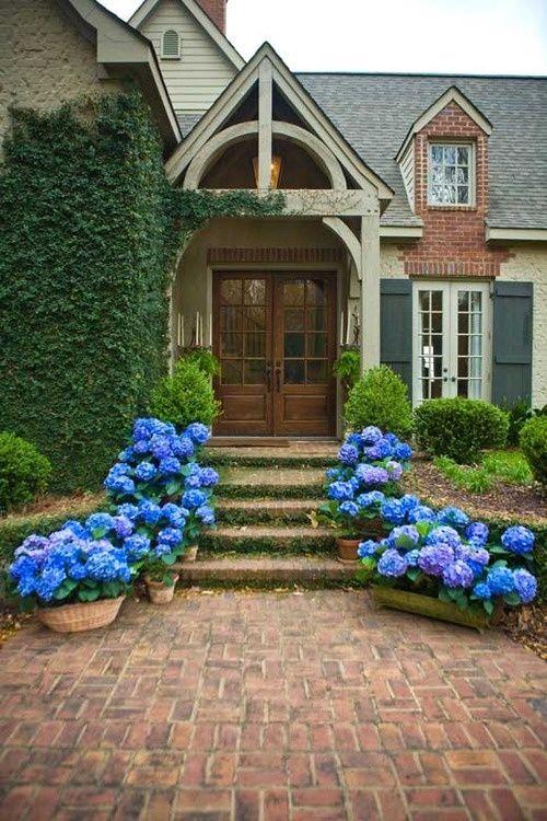 front porch hydrangeas