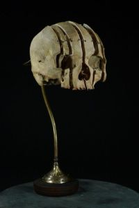 skull lamp | strange and weird | Pinterest