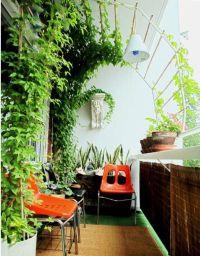 balcony trellis, for shade. | plant | Pinterest