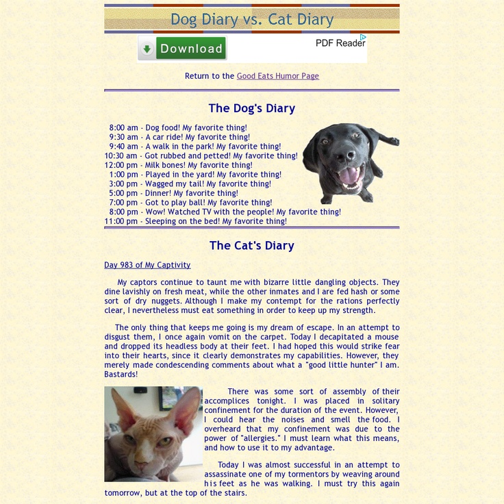 Dog Diary vs. Cat Diary Simply Funny Pinterest