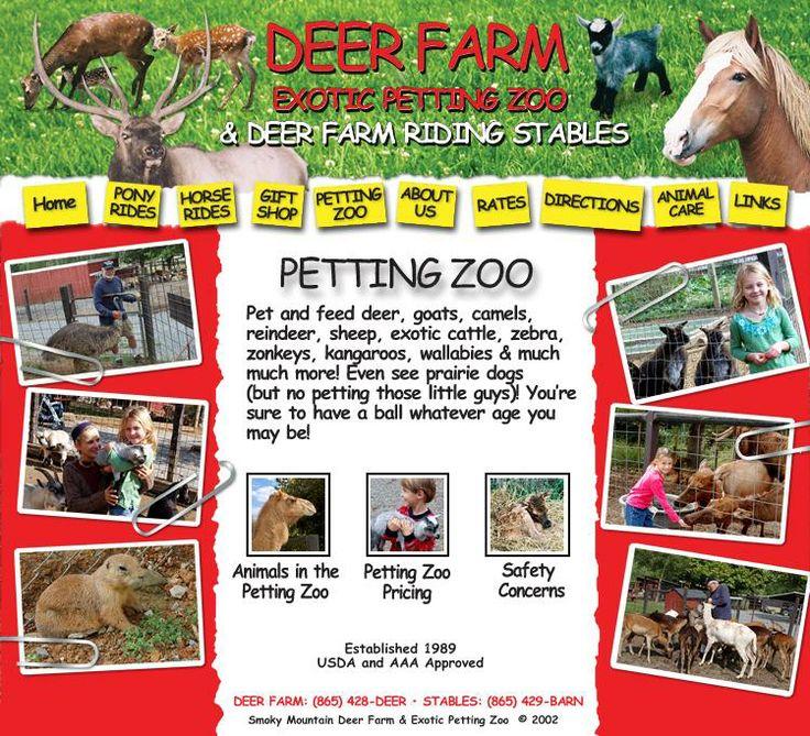 Smoky Mountains Deer Farm & Petting Zoo Things to Do