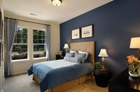 blue accent wall | For Jenny | Pinterest