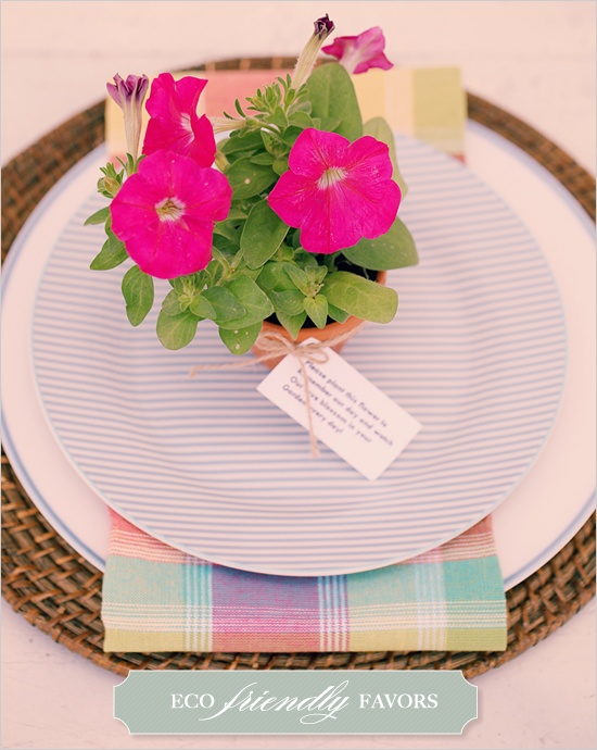 DIY, Do It Yourself, Easy Eco Friendly Place Settings, Eco Friendly, Easy, Place Setting, Wedding Favor, favor