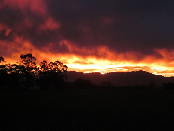 Night Sky Fire In Kaikoura Sunrises & Sunsets