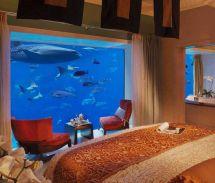 Underwater Suites Atlantis Dubai Awesome Place