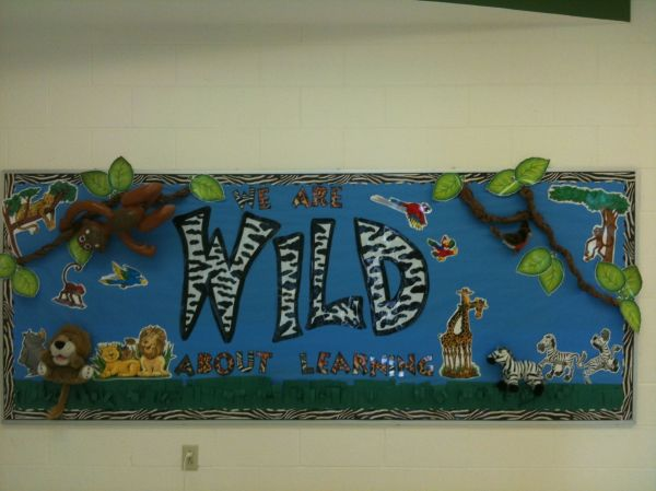 Wild About Learning Bulletin Boards