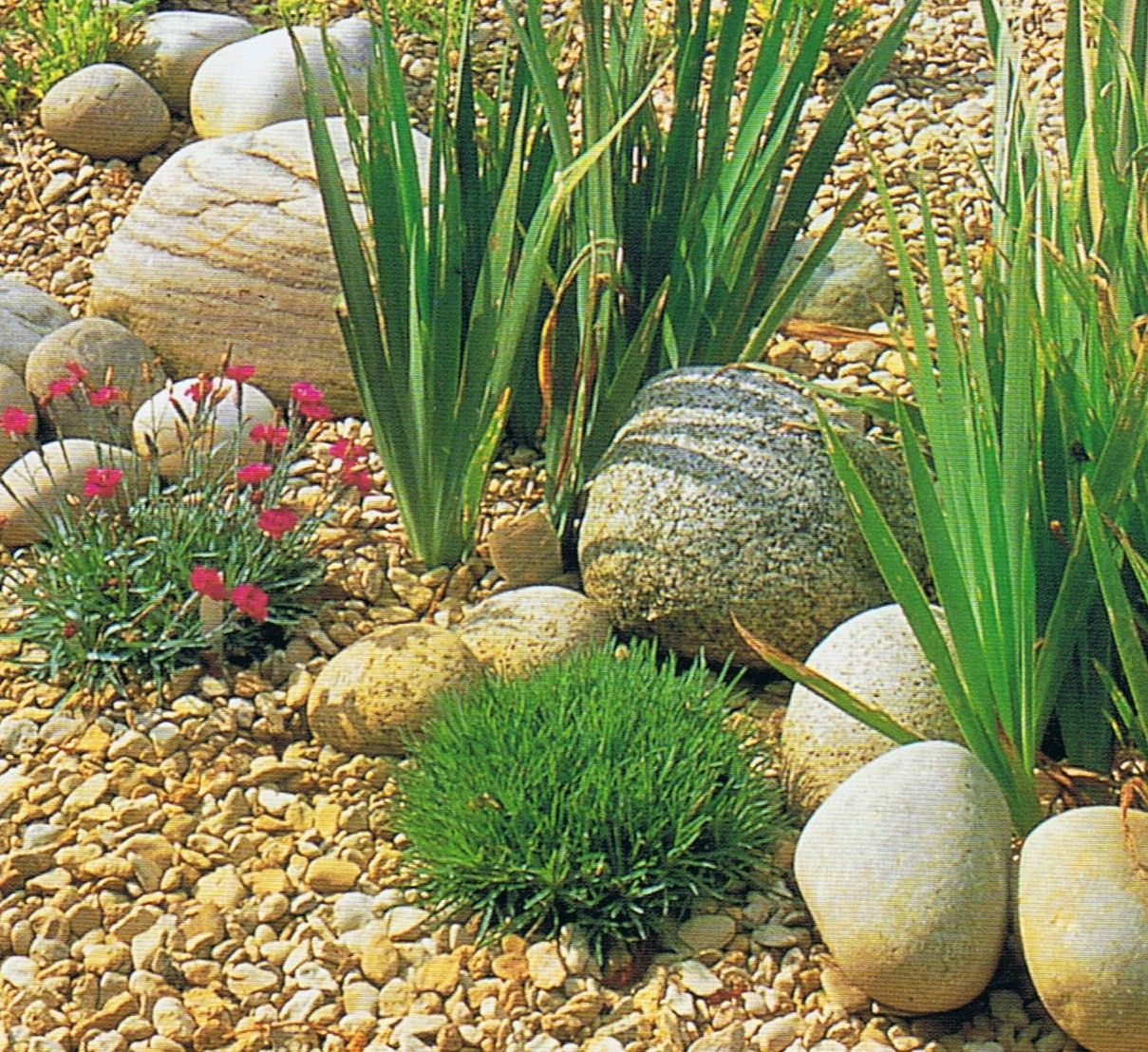 Nice Use And Placement Of Medium And Small 'pebble' Type Stones In