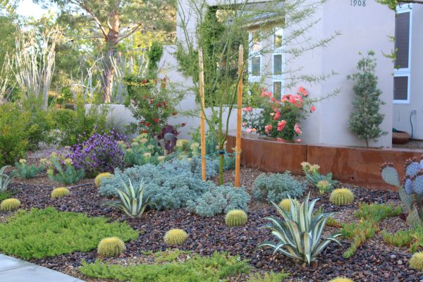 xeriscaping ideas