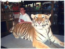 Tigers at Barefoot Landing Myrtle Beach