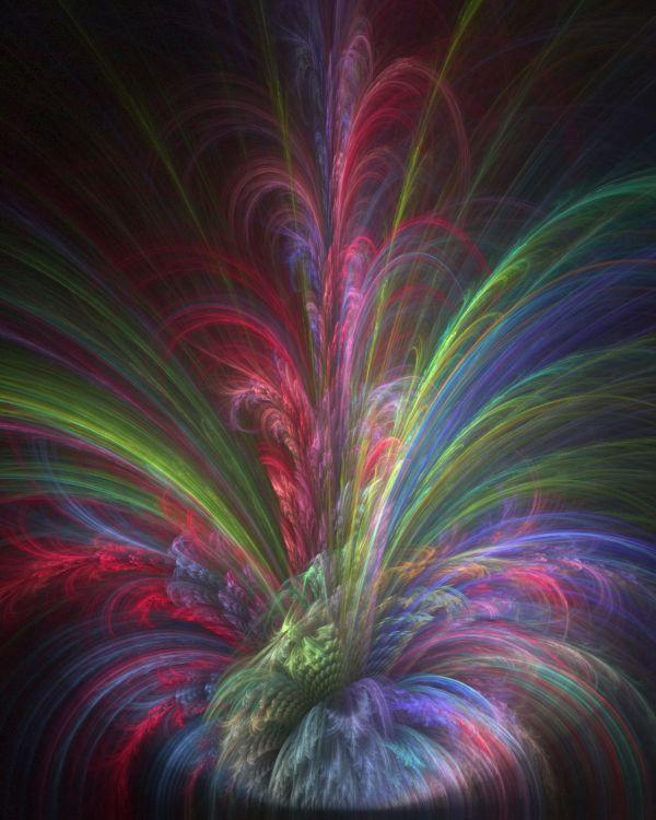 Fractal 'rainbow Fern' Jeff Beautiful Color